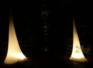 Zauberwald, Wald, Licht, Illumination, Beleuchtung, Bunt, weiß, hell, Herbst, Magisch, Projekt, Studium, Portfolio, Innenarchitektur, Design, Interiordesign, Gestaltung, Zauber, magisch, hell