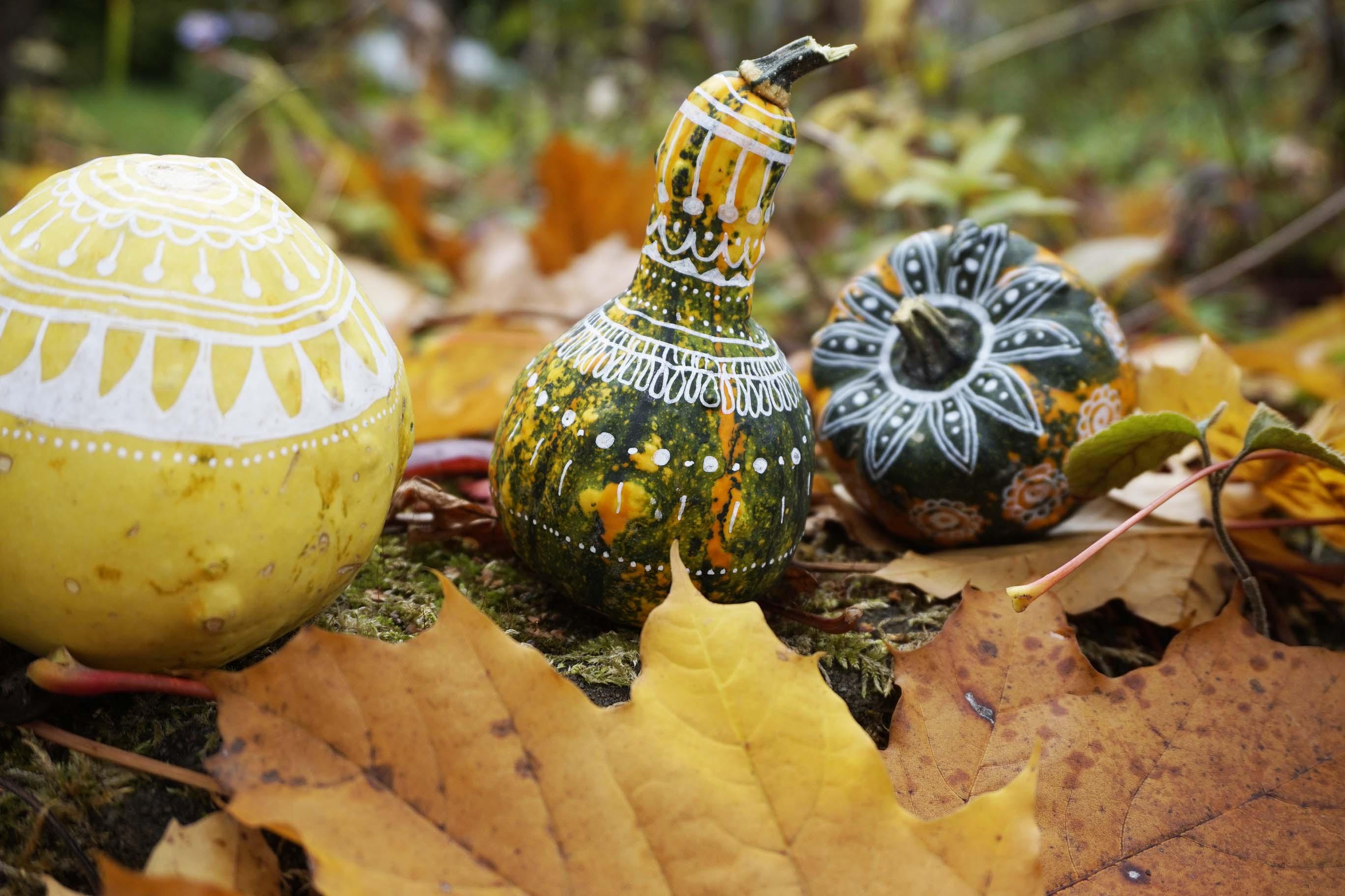 interesting krbis krbisse bemalt wei muster acryl halloween herbst dekoration with krbis bemalen welche farbe